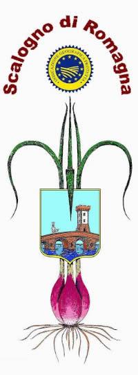 Fiera dello Scalogno di Romagna IGP