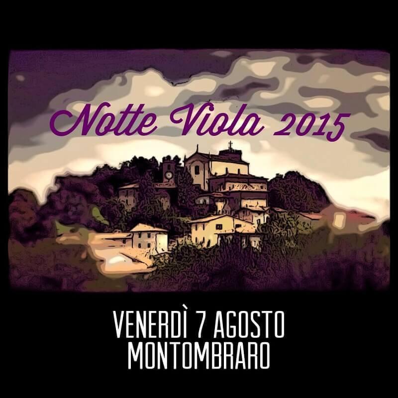 La-Notte-Viola-2015-a-Montobraro-di-Zocca