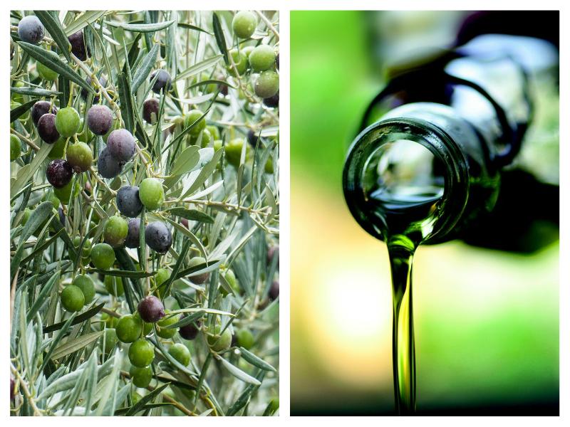 Olio-di-oliva-tipologie-varietà-e-segreti