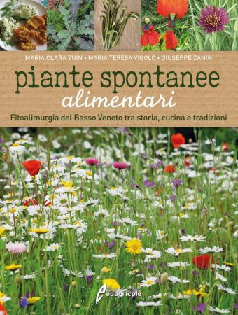 Piante-spontanee-alimentari.-Fitoalimurgia-del-Basso-Veneto-tra- storia-cucina-e-tradizioni