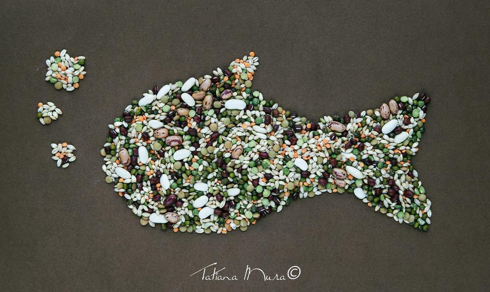 © Pesce, di Tatiana Mura