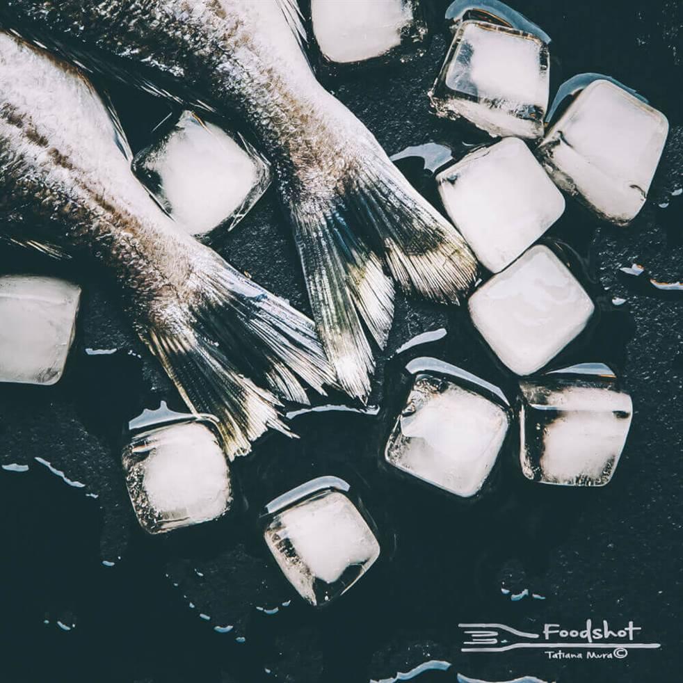 Fresh - © Tatiana Mura