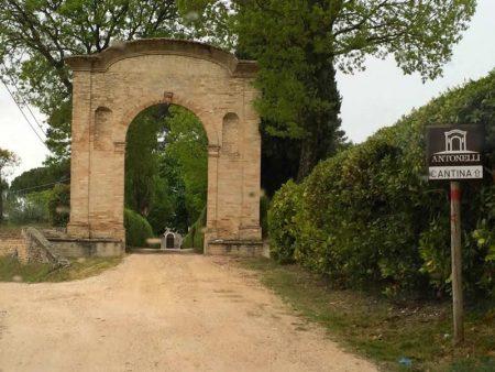 Cantine-Antonelli-Montefalco-PG