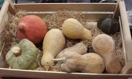 la-zucca-proprieta-varieta-ricette