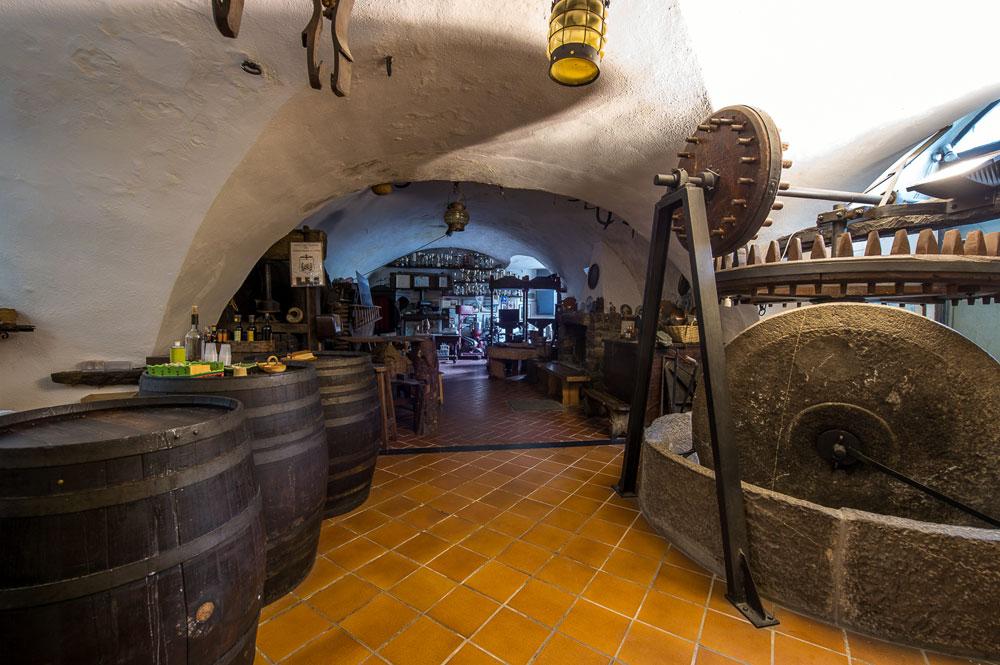 5-museo-olio-sommariva-albenga