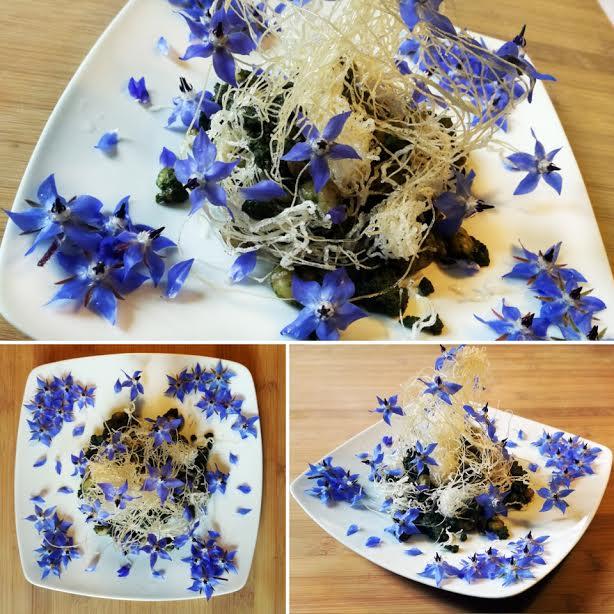 Bouquet di fiori di borragine e gamberetti