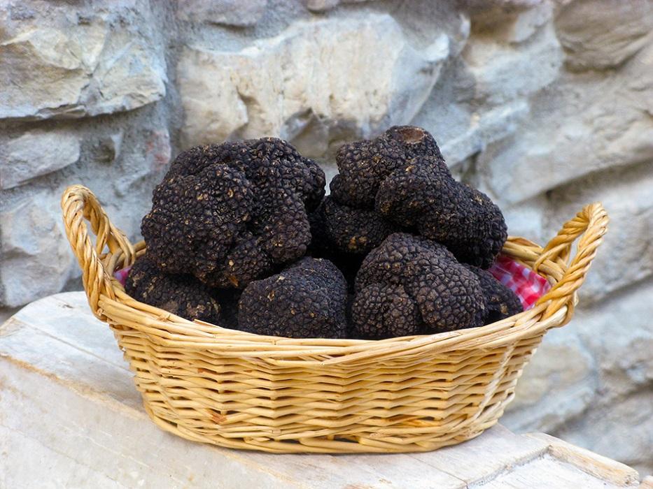 Tartufo nero di Fragno, proprietà e ricette