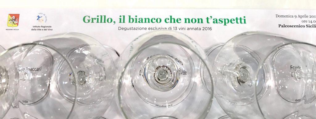 Vino Grillo Sicilia IGT: 13 etichette da provare