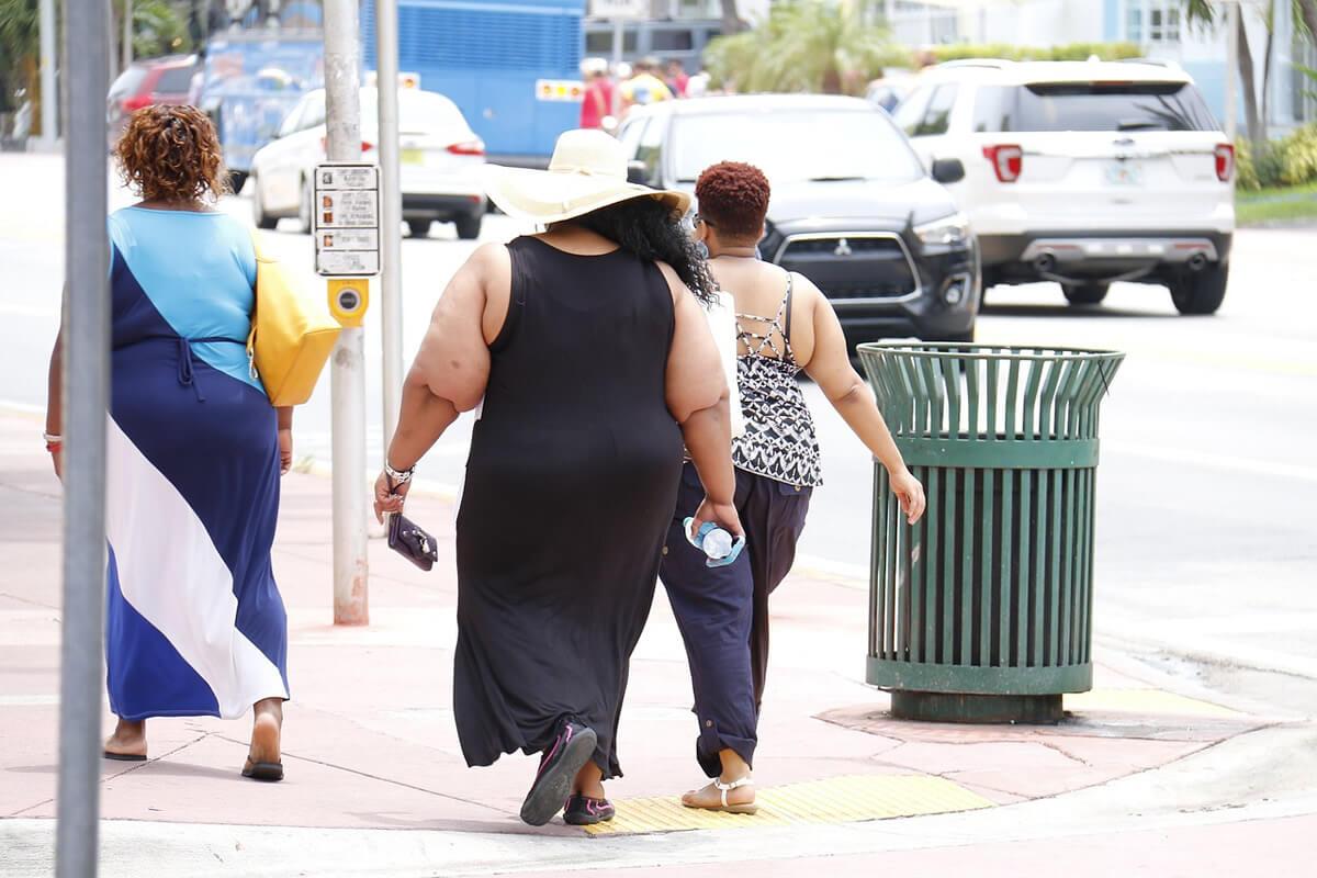 Microbiota intestinale: il volto nascosto dell'obesità