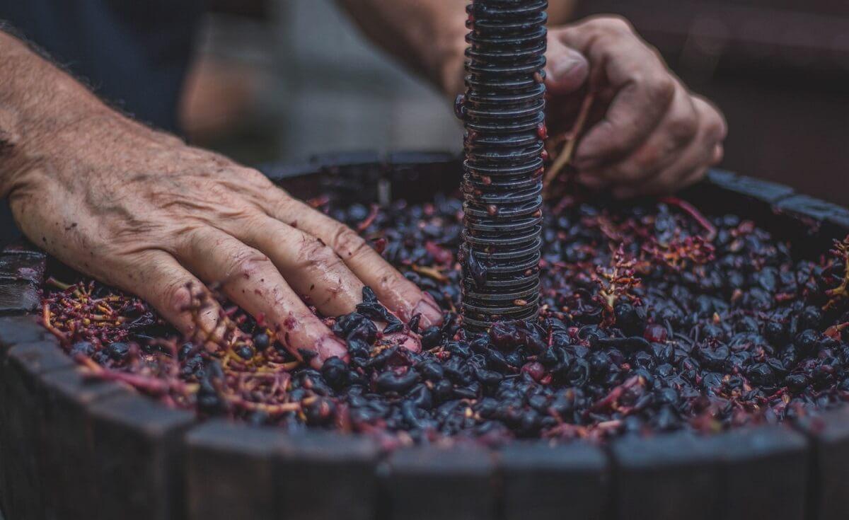 Vinitaly 2018: il sapore autentico della Romagna