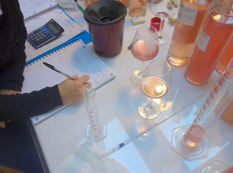 Elisabeth Gabay e la riscossa dei vini rosati