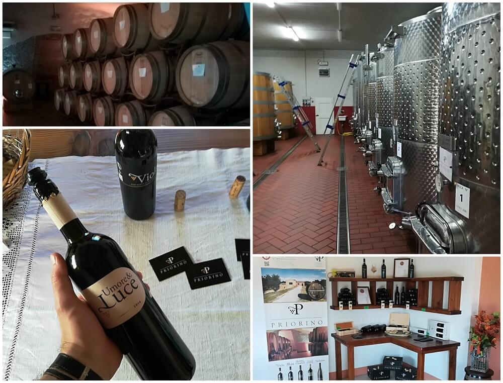 Visita a Cantina Priorino: Degustazione di Umore & Luce IGT 2014