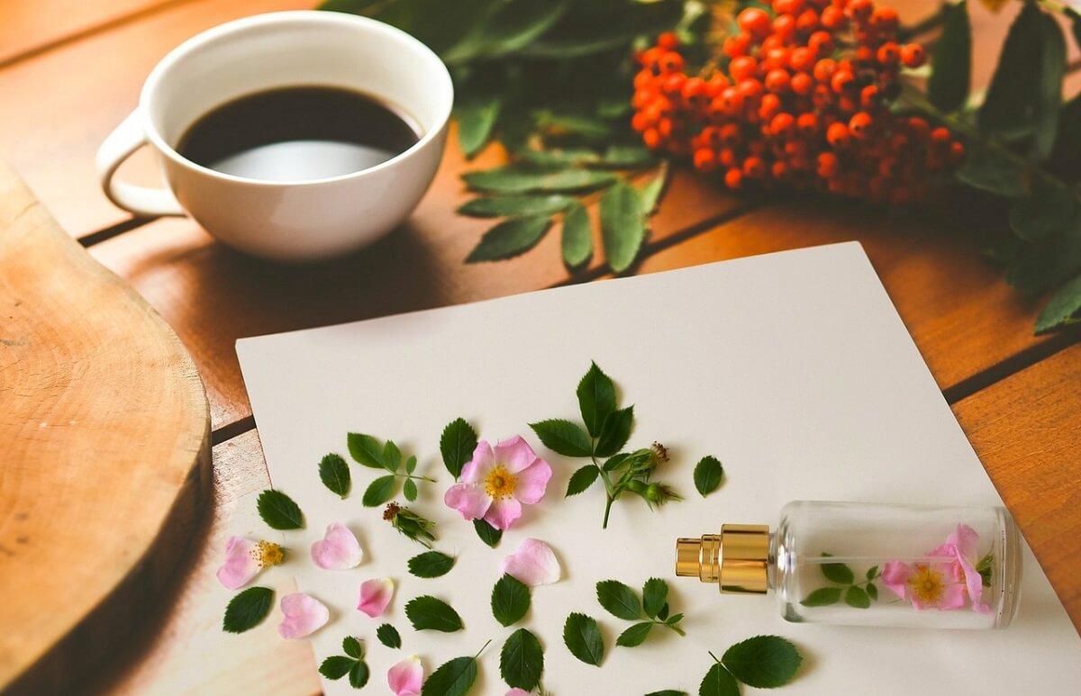Profumi del caffè: cosa dobbiamo sentire? Usiamo la ruota di Andrej