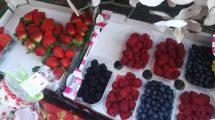 Le fragole di Nemi, i frutti divini lasciati da Venere