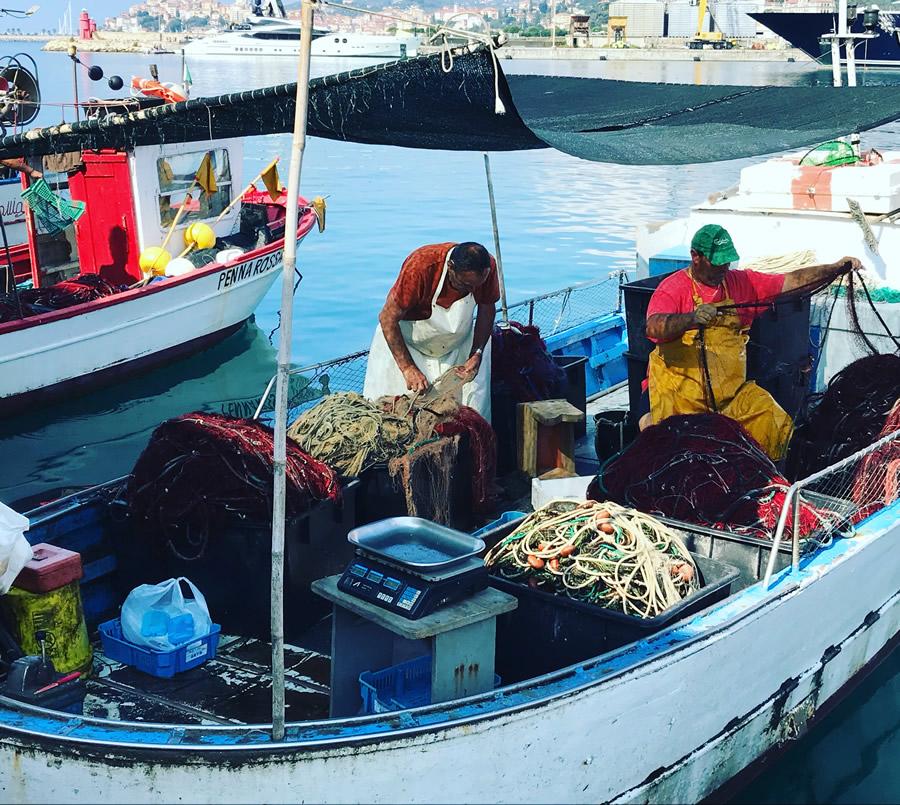 Pesce azzurro protagonista della cucina ligure