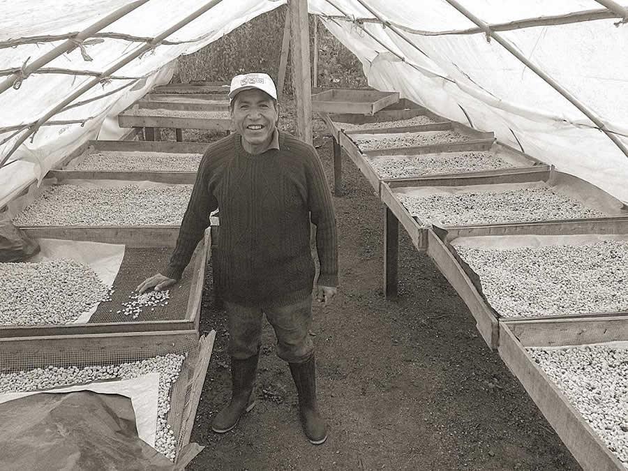 Terzi presenta il Caffè di Permacoltura di 7Elements Perù