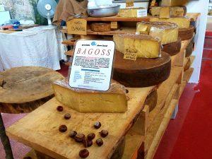 Formaggi DOP della terra bresciana, dal Gorgonzola al Taleggio