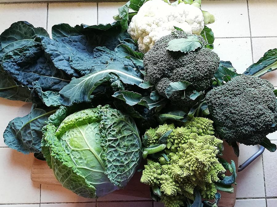Broccoli sono Antinfiammatori naturali