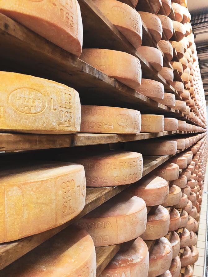 Affinamento formaggi al Caseificio sociale Val di Fassa
