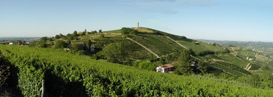 Canelli città del vino, VinCanta