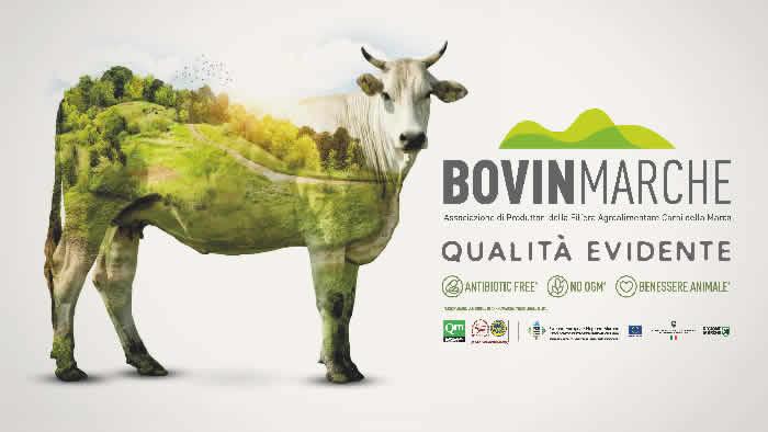 Carne di Razza Marchigiana: Bovinmarche lancia la linea Skin