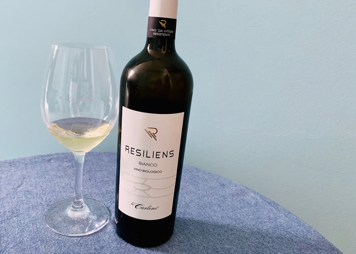 Resiliens Bianco 2018