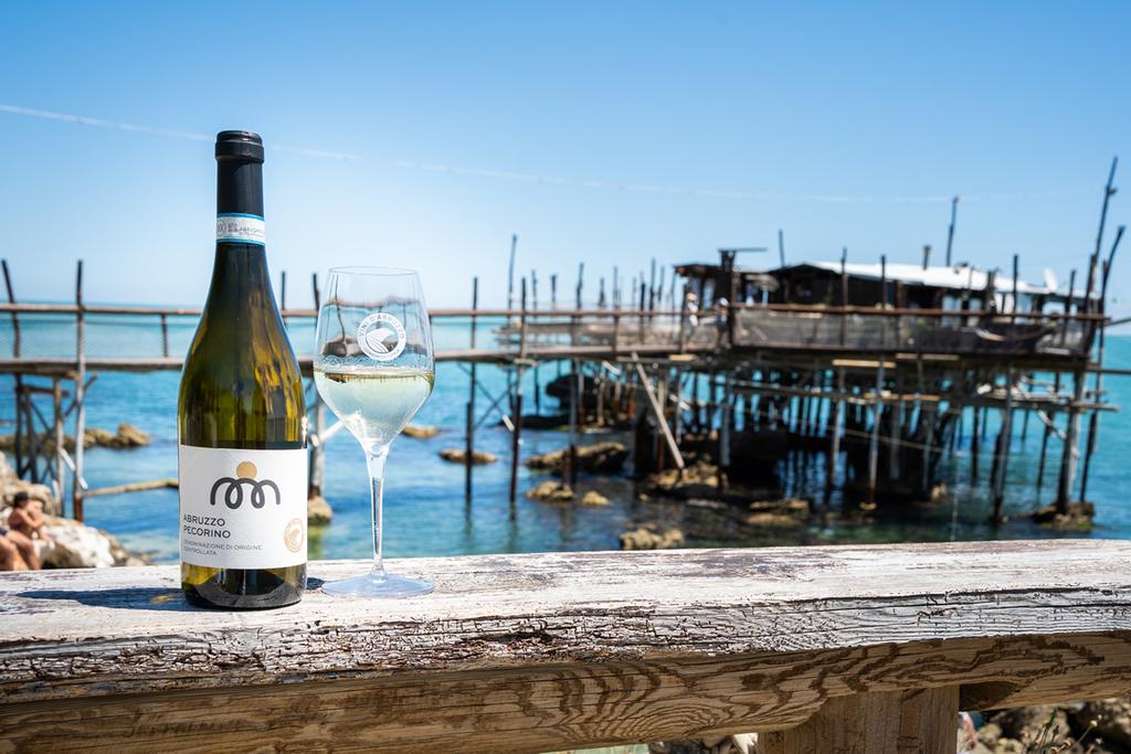 Vino Abruzzo Pecorino: caratteristiche e abbinamenti
