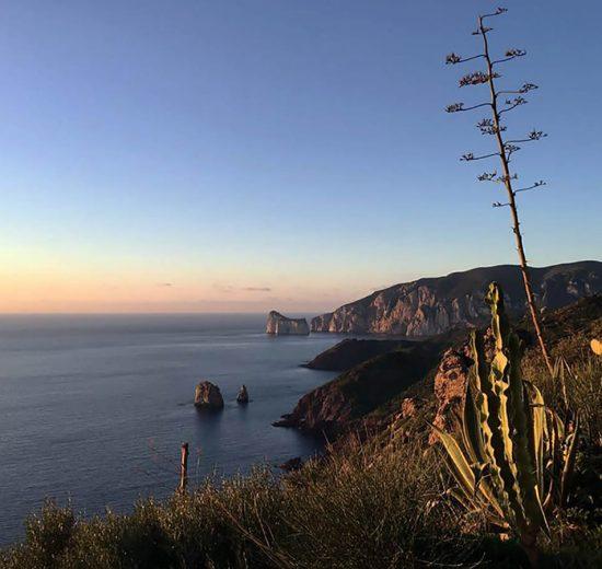 Enoturismo in Sardegna: prospettive di una risorsa da valorizzare