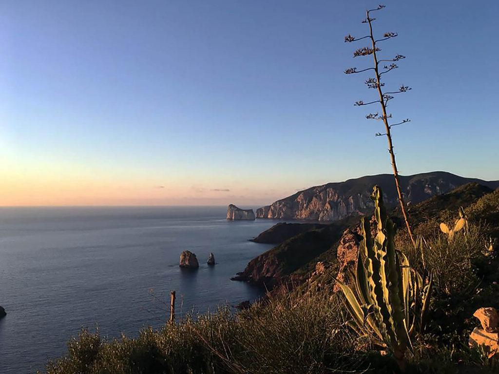 Enoturismo in Sardegna: quali sono le prospettive