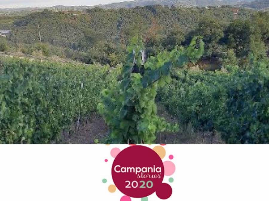 Cosa è successo a Campania Stories 2020