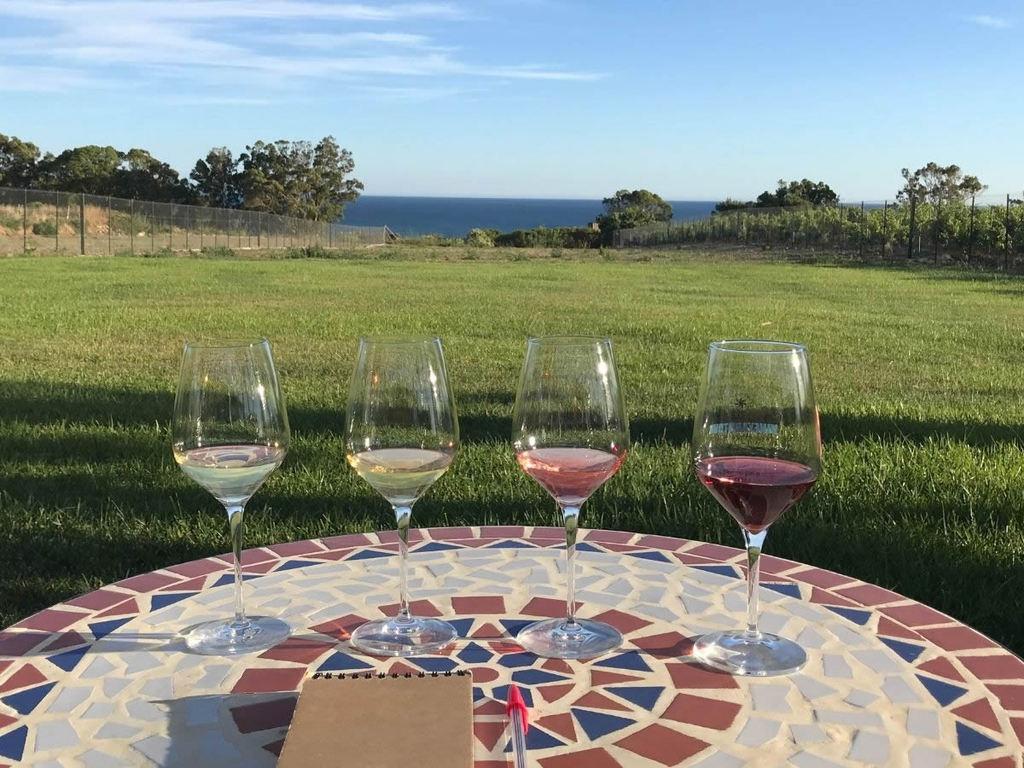 Consigli su Vini siciliani per l'autunno