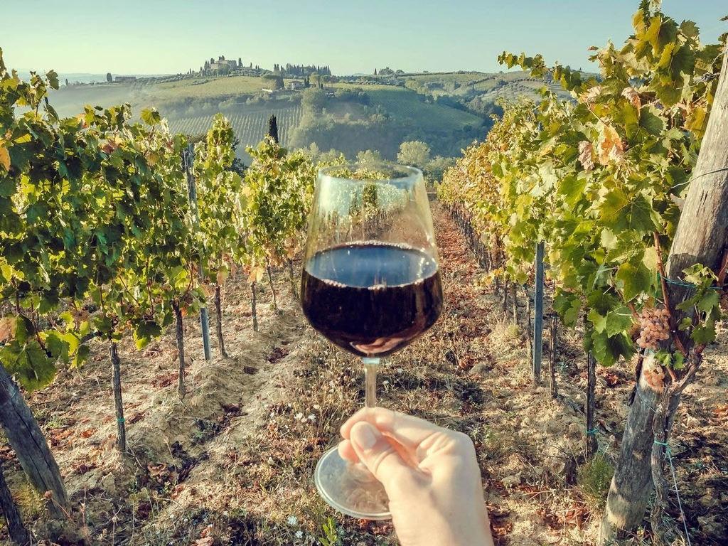 Bio Wine Festival, a Bologna due giorni dedicati ai vini bio