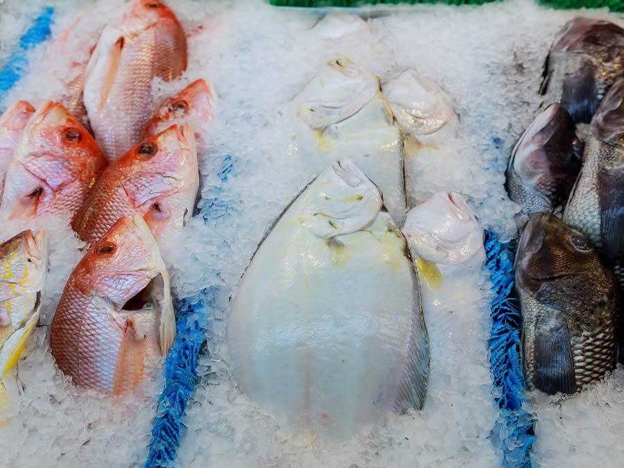 Modalità di congelamento del pesce