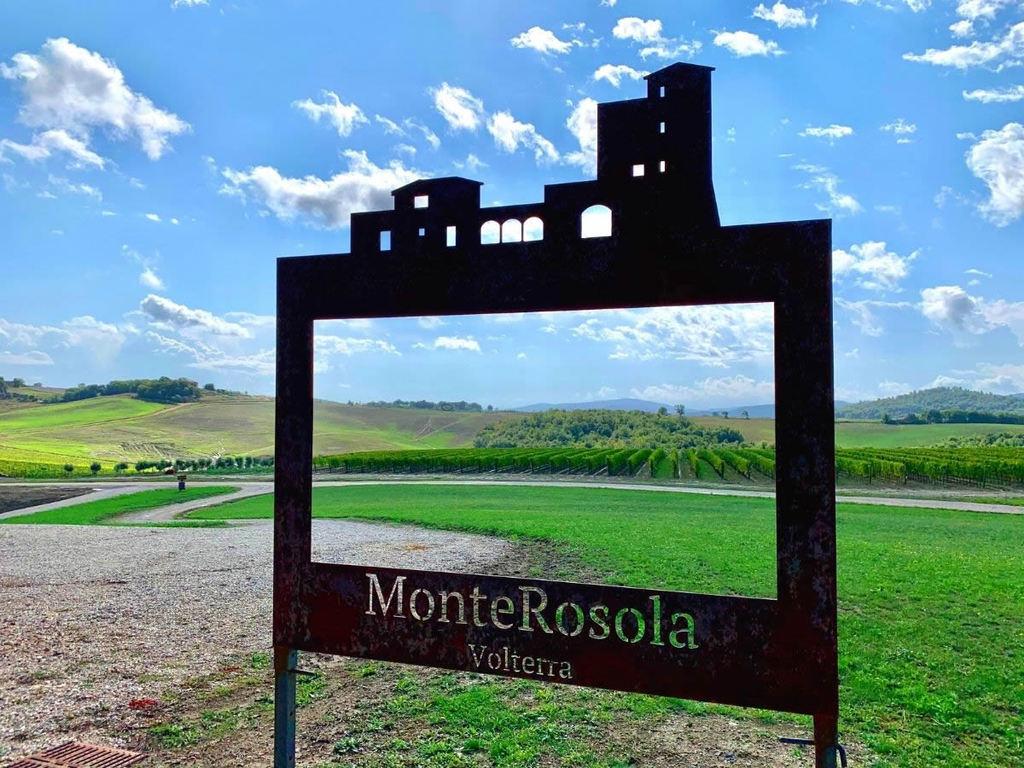 Vini di MonteRosola a Volterra