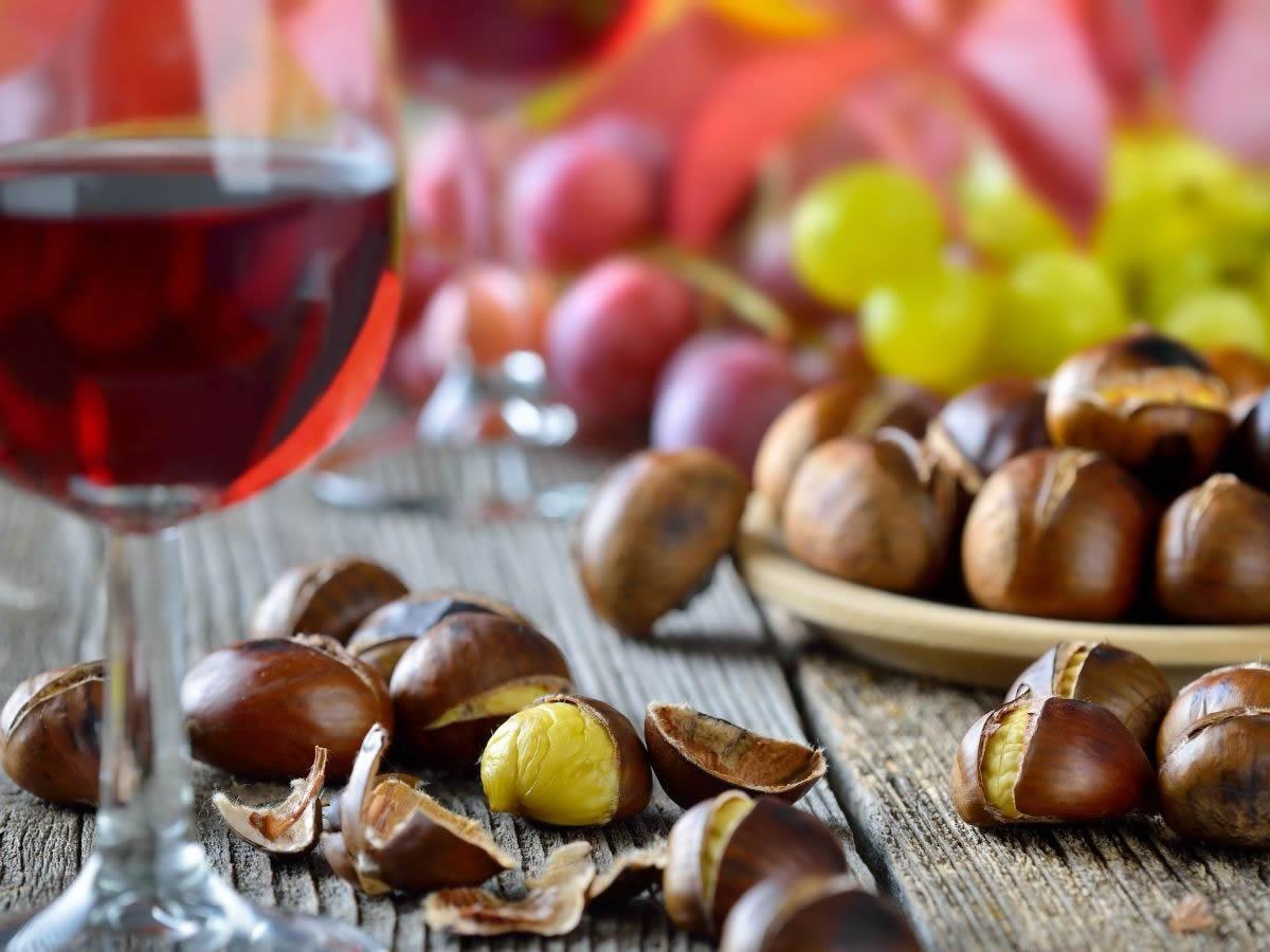 Cos'è il vino novello: facciamo chiarezza