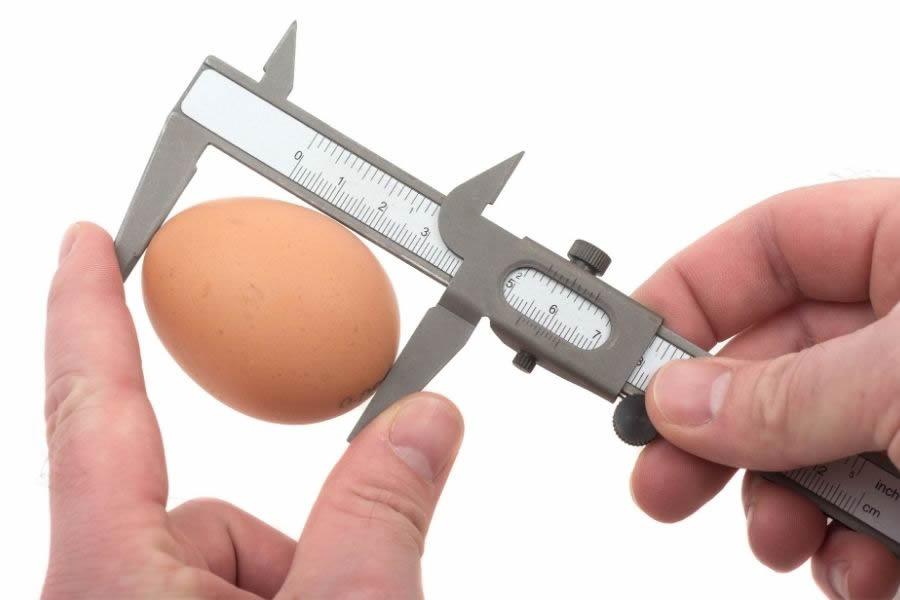 Come si misura la dimensione delle uova