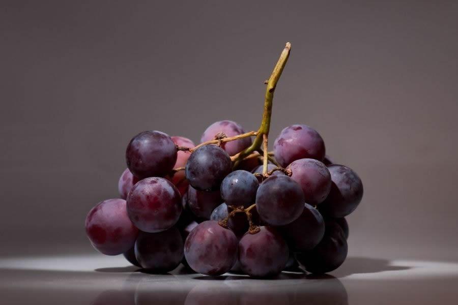 Cosa sono i tannini nel vino? Come funzionano e tipologie