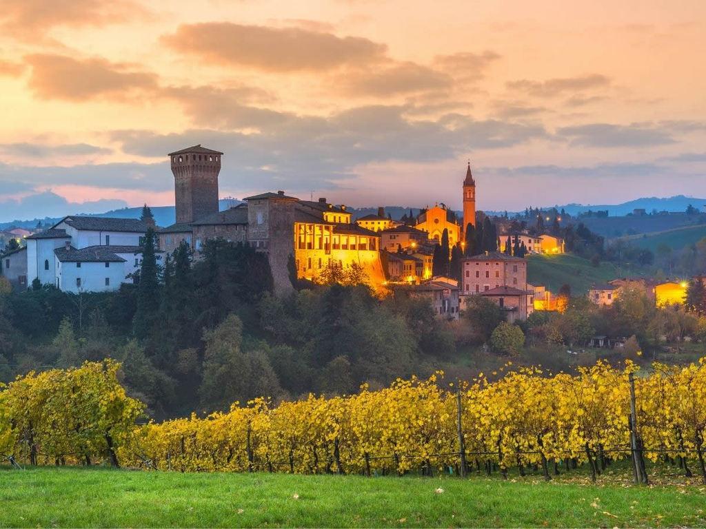 Novità per i vini di Romagna: le nuove mosse del Consorzio