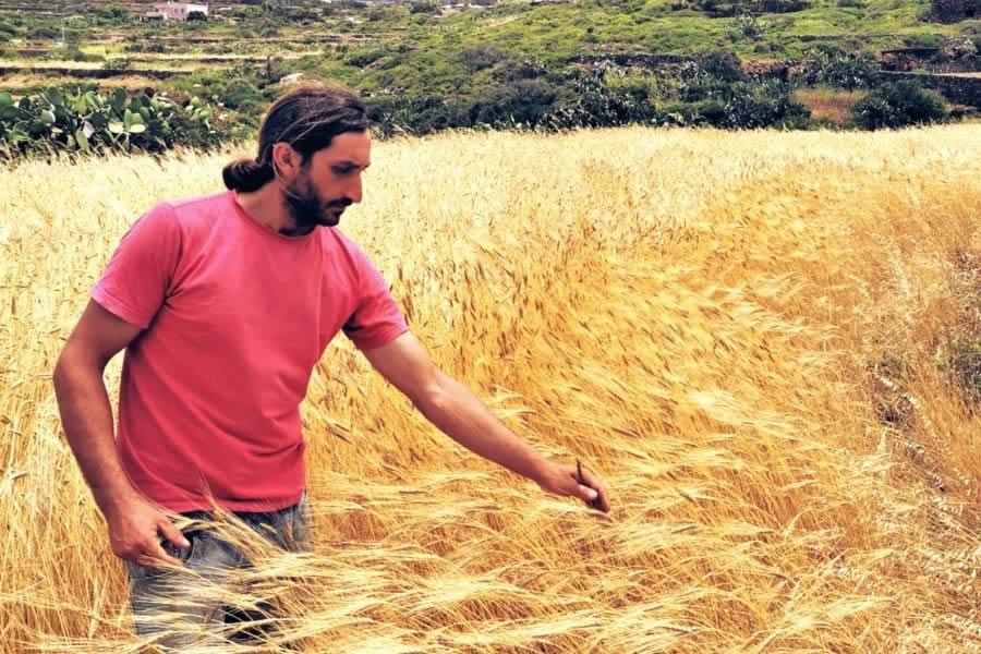 Progetto Crusco: pasta di Pantelleria da grani duri autoctoni