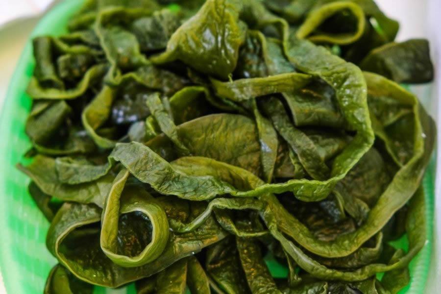 Tagliatelle di alghe