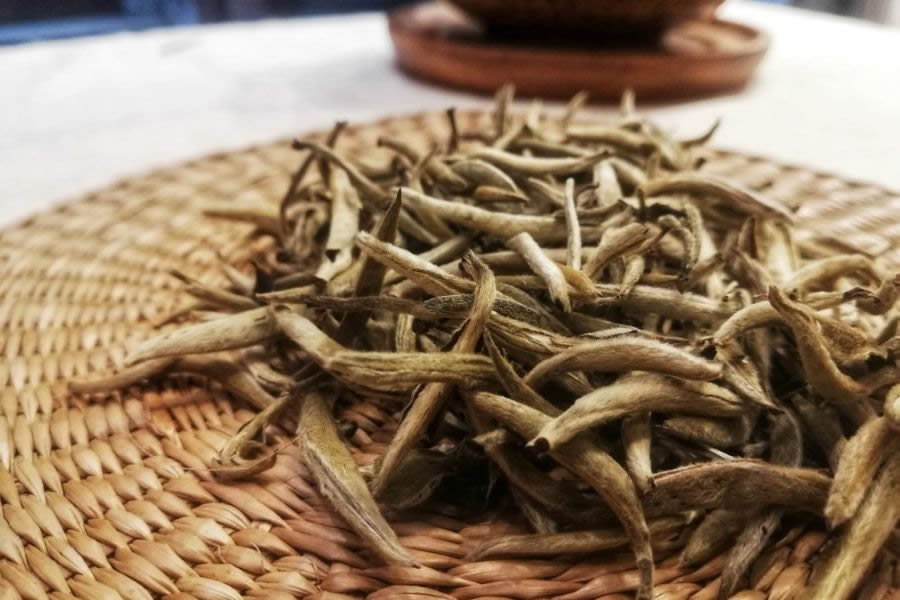 Caratteristiche del Tè Bianco e proprietà benefiche