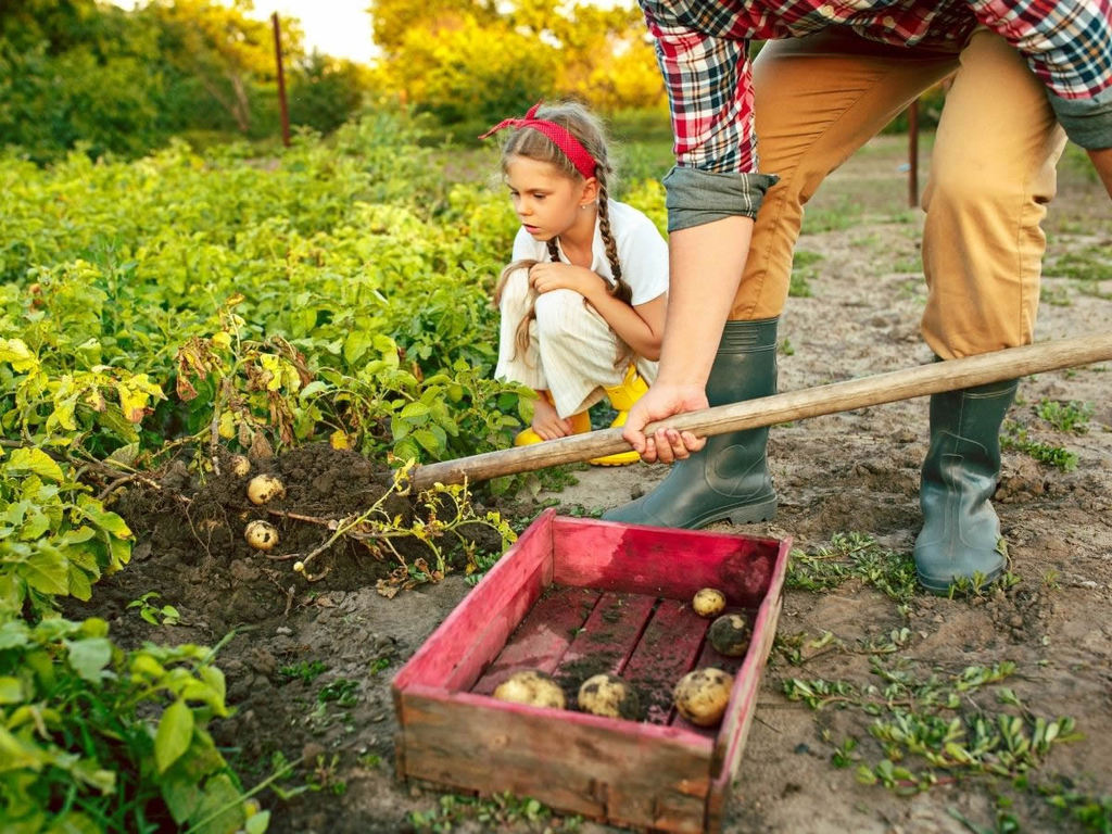 Scopo dell'agricoltura sociale: prospettive in Italia
