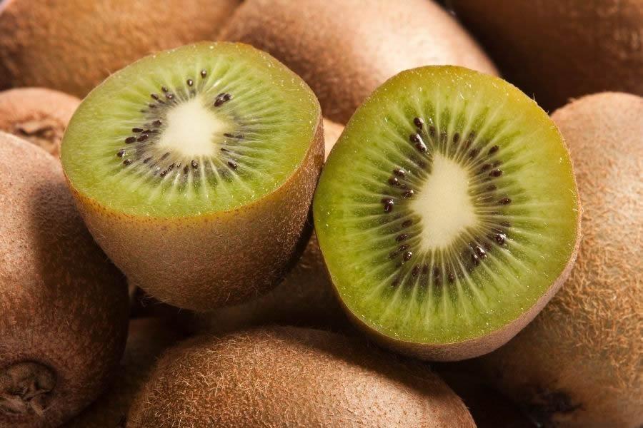 Cause della moria del kiwi e rimedi possibili