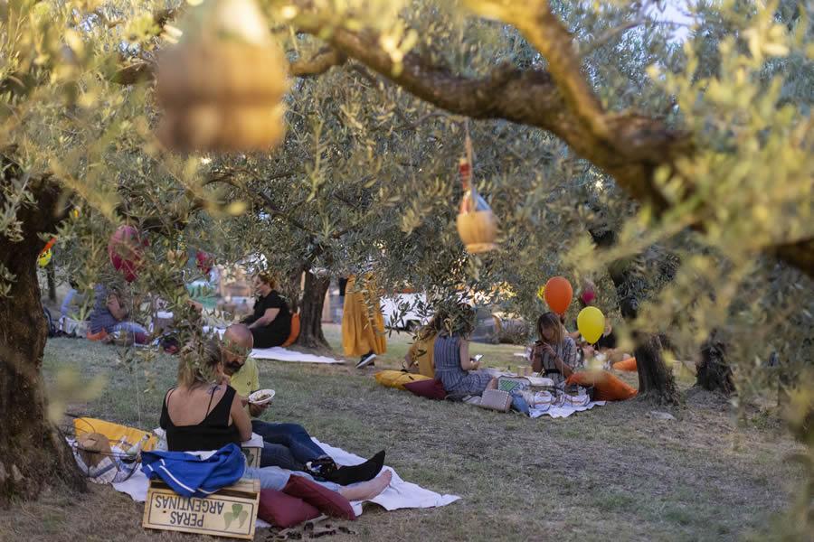 Imbrunire di Terre Giunchi: il picnic sulle colline cesenati