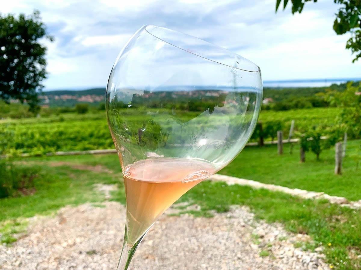 La Vitovska punta alla DOC: caratteristiche del vino del Carso